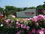 Kanoya_Rose_Garden_002.JPG
