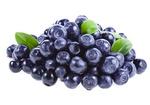 blueberry 2.jpg