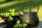 japanese tea.jpe