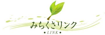t_link.jpg