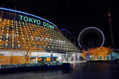 tokyo dom.jpg